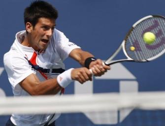 Djokovic trifft im Finale von Wien auf Wawrinka