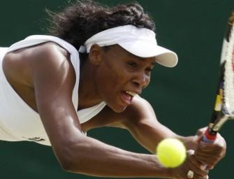 Venus Williams steht unter den letzten Acht