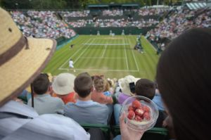 A spectator eats strawberries and cream as she watches Spain's David Ferrer play against Russia's Andrey Kuznetsov during their men's singles second round match on day three of the 2014 Wimbledon Championships at The All England Tennis Club in Wimbledon, southwest London, on June 25, 2014. AFP PHOTO / CARL COURT - RESTRICTED TO EDITORIAL USE (Photo credit should read CARL COURT/AFP/Getty Images)