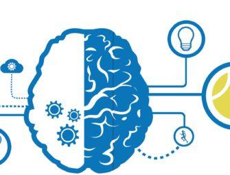 Besser spielen: Spielen Sie Brain-Tennis!