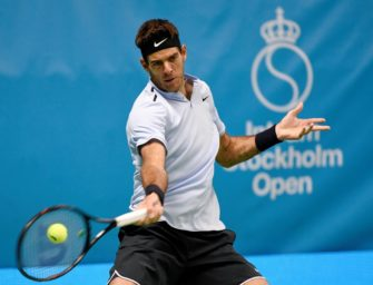 ATP-Tour: Turniersiege für del Potro, Tsonga und Dzumhur