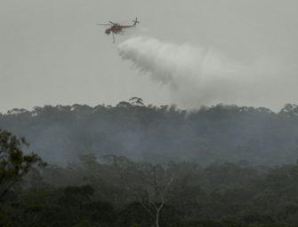 Australien: ATP-Cup-Organisatoren befürchten Auswirkungen der Buschbrände
