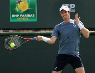 """""""Ich bin ein Idiot"""": Murray sucht Ehering und müffelnde Tennisschuhe"""